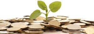 Ci 1.0 Investment Report